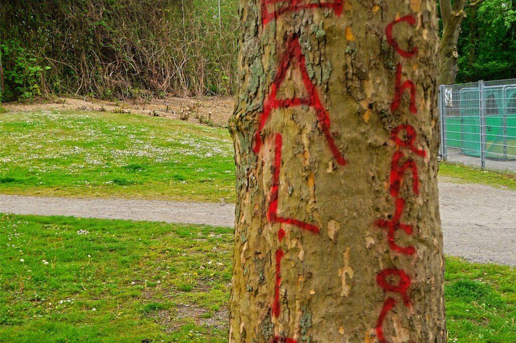 Selbst ein Baum wurde nicht verschont.